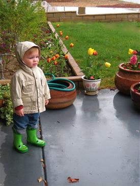 Rainboot1